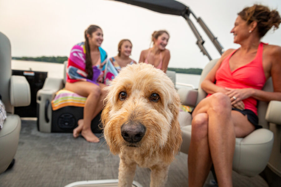 The Most Pet-Friendly Boat in the Industry